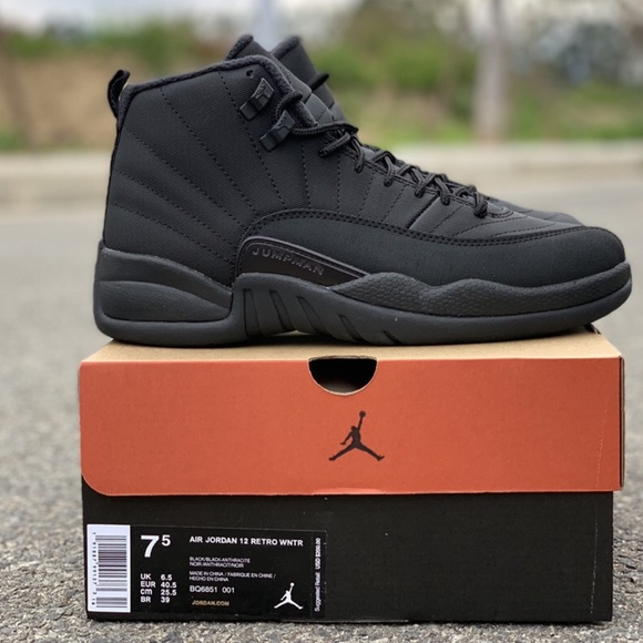 separation shoes 3261e 6b7e8 Air Jordan 12 - Winter